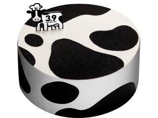 3.9澳洲牛奶蛋糕广州上市