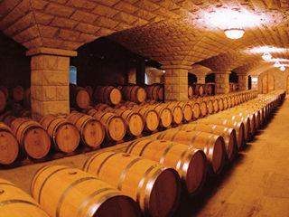 暴露葡萄酒年龄与品质的数字