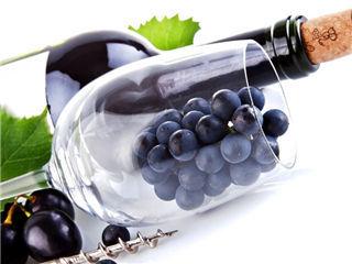 为葡萄酒验身