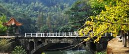 线路一:南雄赏银杏露营泡未开发的温泉小游