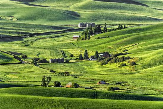 地区一农场风景