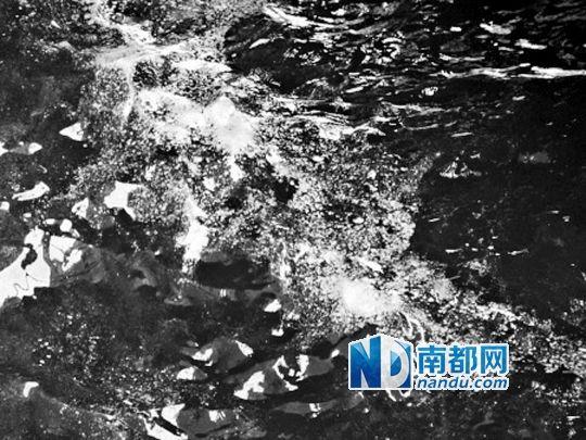 易引起过敏,应避免直接接触赤潮海水