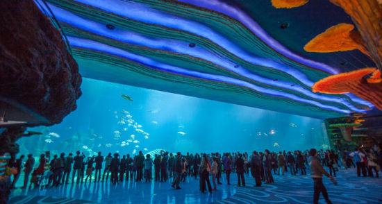 全球最大的海洋动物主题公园