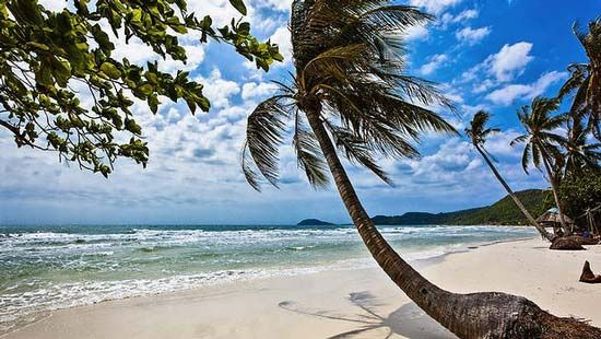 牛群时不时穿过岛上的闹市区,富国岛上的能源供应是出了名的不稳定,而且价格也十分昂贵。越南本土对岛上用鱼做成的酱料需求异常巨大,以致不少人冒着巨额罚款的风险仍将酱料装在行李箱中走私到越南本土。从越南首都胡志明市向西飞行约45分钟就可以到达富国岛,偏远的海岛西部有着被誉为越南最美的海滩,其实,南部海域的潜水环境也称的上是越南最好的,岛上的内部地区约有百分之九十为热带雨林所覆盖,十分迷人。这座鲜为人知的小岛,两年前在胡志明市一群背包客的推荐之下,我才造访了它。除了岛上藏匿在原始森林里的秘密瀑布,岛上还有大片