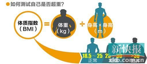 四川人口有多少_全国肥胖人口占多少