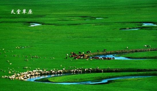 二姐兔丁_吃遍国内东西南北中 暑期美食之旅目的地盘点_新浪阳江