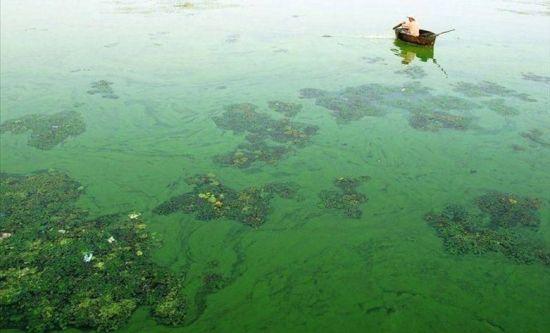 中国之殇 经济发展换来环境破坏河流污染