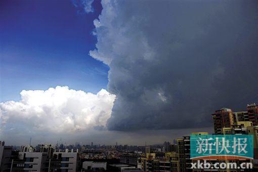 台风的可爱图片