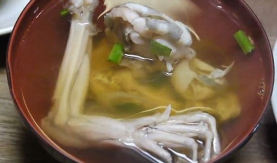 据英国《每日邮报》8月21日消息,日本浅立餐厅,由于它稀奇古怪的菜色而熟为人知。视频中,活剥了牛蛙皮,并把它剁成一块块的恶心残忍的画面,让观众感到愤怒和厌恶。配着酱油和一片柠檬,餐盘里牛蛙依然抽搐地被端到客人面前。   这段视频对你吃蛙提供了一个全新的方式,视频中,你可以亲眼看到一个日本餐厅的厨师是如何刺伤并断其头、剥其皮,像生鱼片展示到大家面前,在网络上引发了愤怒情绪。在呈现给顾客之前,牛蛙被放在有酱油和一片柠檬的冰块上牛蛙,这个过程中是极其痛苦的。虽然牛蛙立即被厨师杀死,但它依然可以动,看起来像试