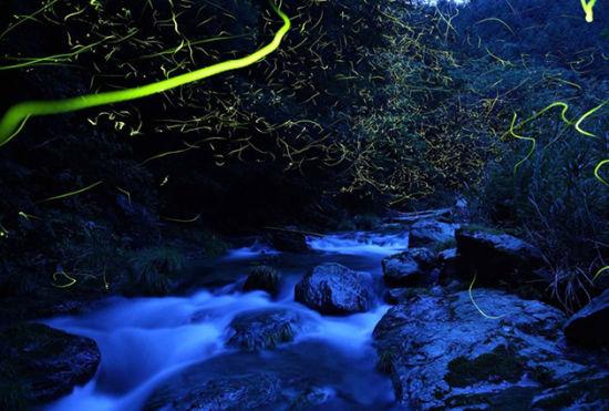 """跟着""""日本之光""""感受其对大自然的情感"""