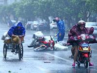"""台风""""海鸥""""已造成海南广东广西597万人受灾"""