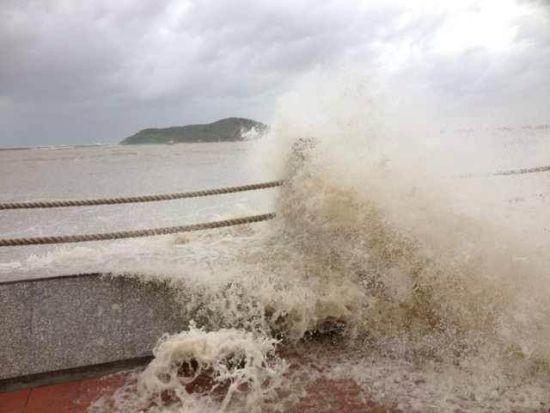 南宁:台风吹倒大树 压死两名女子