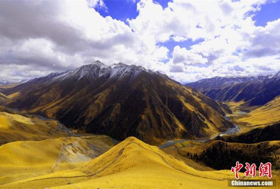 新疆和静县巴音布鲁克高原入秋如人间仙境