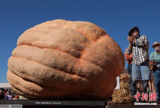 美国举办南瓜大赛:933公斤巨型南瓜夺冠