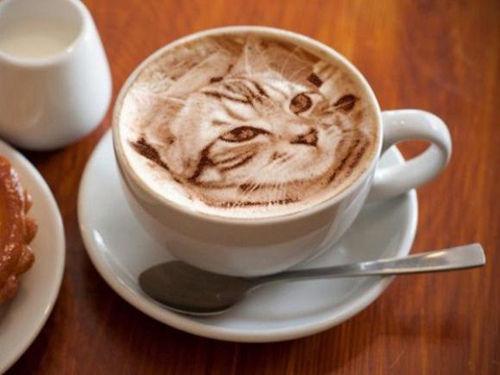 日本拿铁拉花现逼真猫咪图案引众人惊叹