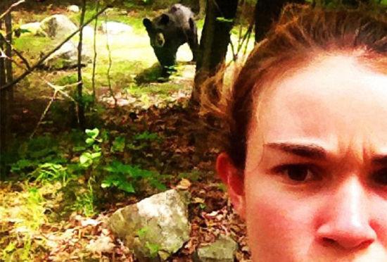 美国游客兴起冒生命危险与野熊自拍引担忧