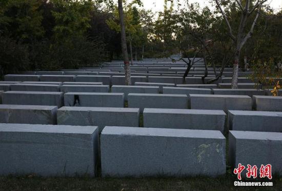 """郑州绿化带景观石被指像""""无名墓地"""""""