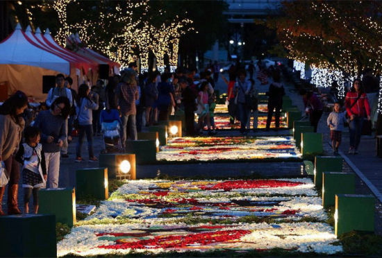 东京鲜花节开幕斑斓花毯绘出绝美夜色