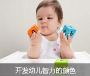 开发幼儿智力的颜色