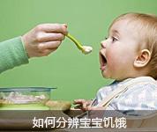 如何分辨宝宝饥饿