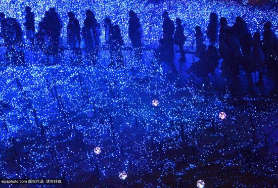 """东京25万盏灯光营造出浪漫""""蓝色海洋"""""""