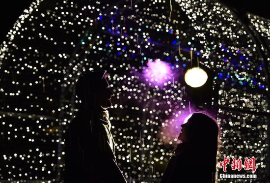 伦敦皇家植物园亮灯迎圣诞让人如置身梦境