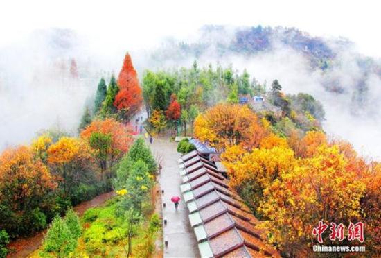张家界天子山连绵冬雨现云雾仙景