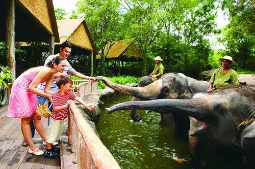 林密草香的新加坡动物园