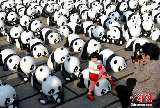 """千只""""熊猫""""聚在合肥街头集体卖萌"""