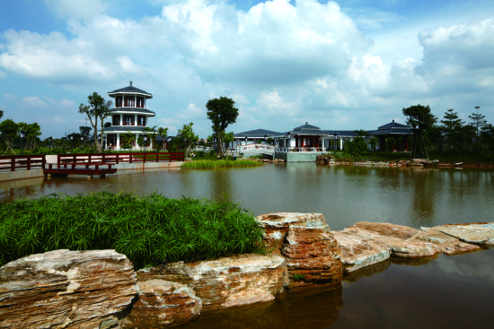 南依广州大学城