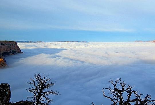 强降雪使美国大峡谷一夜之间变成仙境