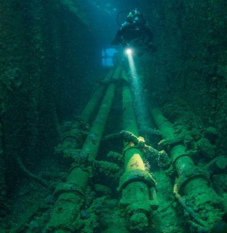 壁纸 海底 海底世界 海洋馆 水族馆 450_461