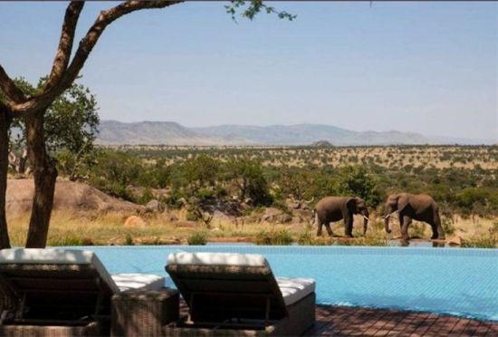 盘点世界上最难以置信的五座酒店泳池