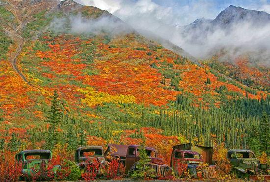 加拿大废弃卡车锈色五彩斑斓融入自然美景