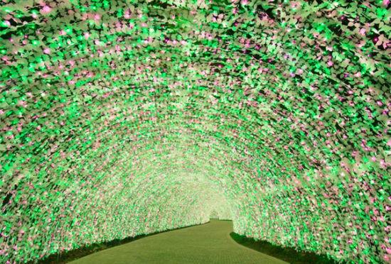 冬日亮晶晶:日本最大型灯光展览回归