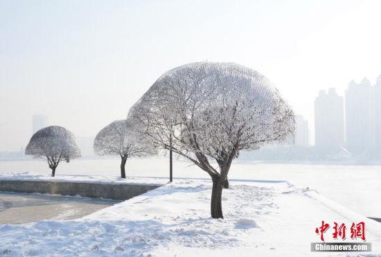 松花江畔现三月雾凇宛如冰雪童话