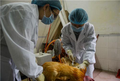 动物诊疗机构等监管对象按《动物防疫