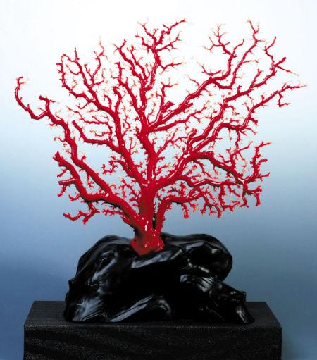 天然红珊瑚饰品表面用放大镜可见指纹状花纹
