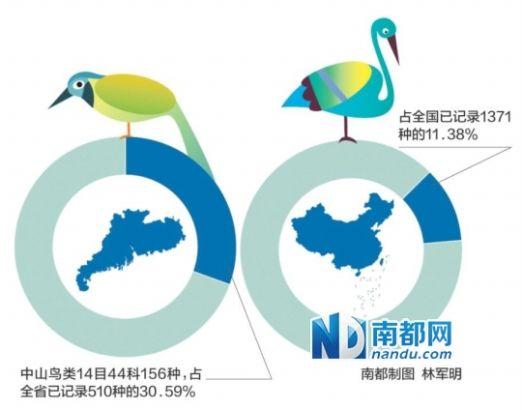 """广东省野生动物救护中心专家侯方辉表示,""""对野生鸟类'亲近&"""