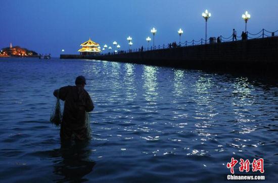 青岛六月11号潮水示意图