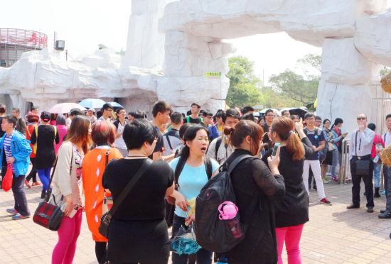 第十届中国岭南野生禾雀花观赏节开幕