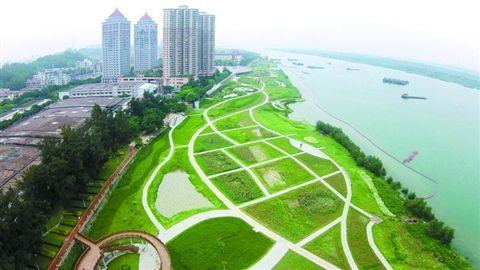 昨日航拍的海滨公园./佛山日报记者黎汉沿摄图片