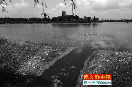 松木山水库上游排污口有望年底实现污水截留