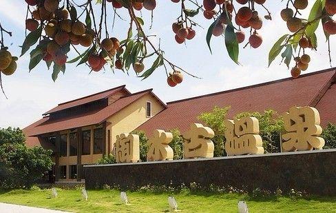 度假村设有巴厘岛风情的温泉池区43个形状不一,功能各异的温泉池