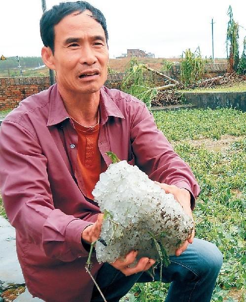 18 日, 吴川村民自称捡到巨型冰雹