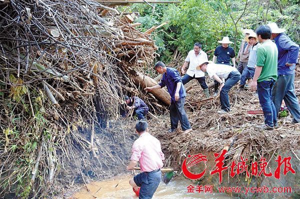 搜救人员正从被山洪冲下的荆棘中寻找失踪者