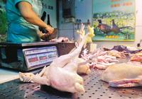 生鲜鸡两成档主想退市