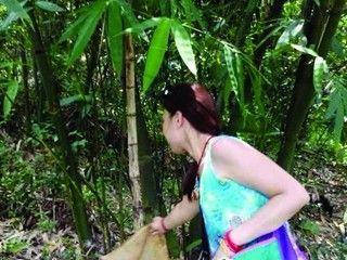 曝深圳女网友疑在公园放生毒蛇 警方已介入