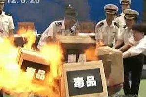 广州海关无害化公开销毁毒品近1吨
